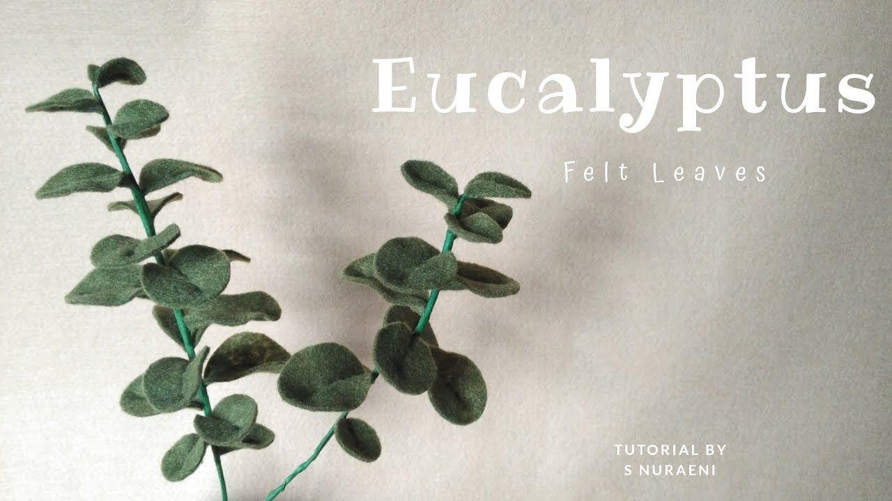 Felt Eucalyptus Leaves Tutorial Daun Isian Buket Dari Kain