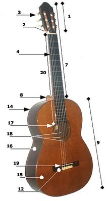 Best Guitar Review Acoustic Guitar Strings Acoustic Guitar Guitar Tuning