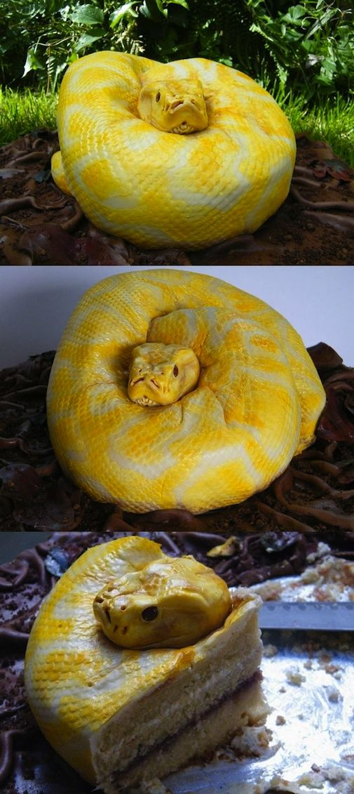 Snake Cake  This Is One Cake I CAN Resist Yikes Good For A - Snake birthday cake