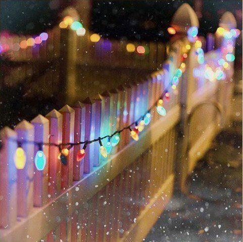 Christmas lights on a fence