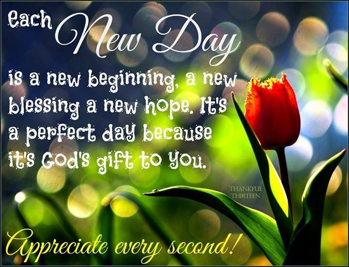 Each New Day Is A Beginning Quotes Morning Quotes Good Morning