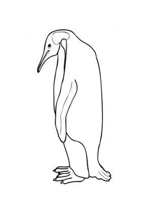 Ausmalbilder Grosser Kaiser Pinguin Tiere Zum Ausmalen Malvorlagen Pinguine Tiere Zum Ausmalen Ausmalen Ausmalbild Pinguin