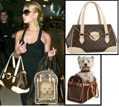 If I were rich, Chipper would travel in a Louis Vuitton carrier like this!