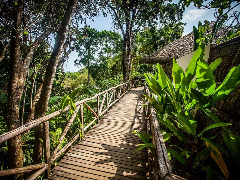 Osa Peninsula Lodge Photos Lapa Rios Costa Rica Resorts Costa Rica All Inclusive All Inclusive Resorts