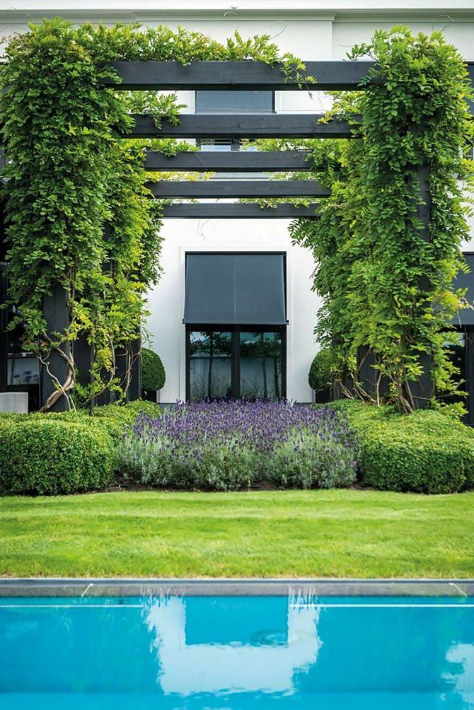 Elegante jardim Belga Elegante, Jardines y Jardín
