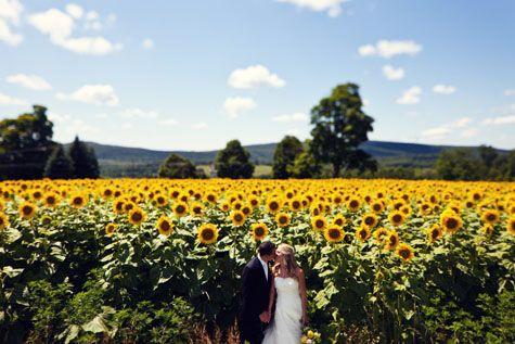 Lion Rock in Sharon, CT   Farm wedding venue, Farm wedding ...