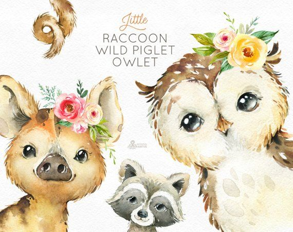 Little Raccoon Wild Pig Owlet Watercolor Animals Clipart Woodland Forest Flowers Kids Cute Nursery Art Nature Realistic Friends Animal Clipart Watercolor Animals Watercolor Nursery Animals
