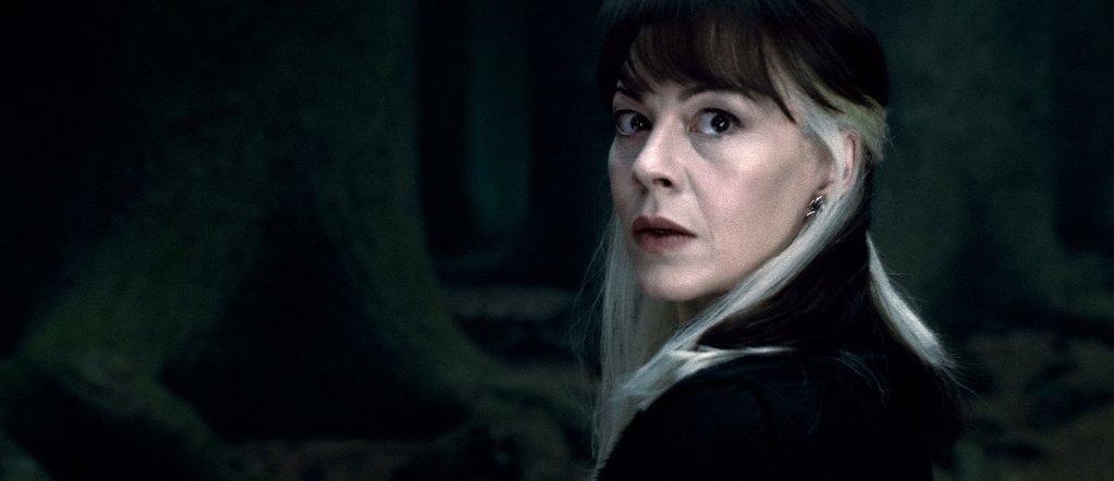 Helen Mccrory Met Her Harry Potter Hair Inspo Color Hair Streaks