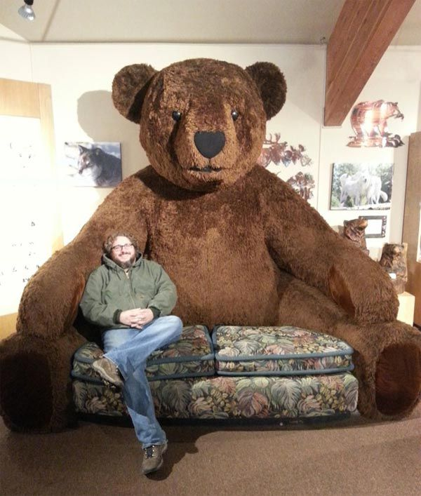 Funny Couches giant teddy bear sofa this would be great to get a big (normal