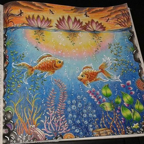 Daybreak or sunset fish in pond from secret garden by for Garden pool book
