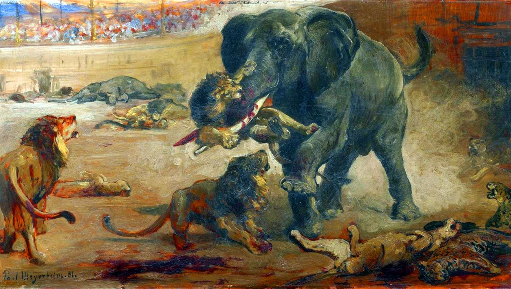 Battle between the African elephants and lions in the Coliseum ...