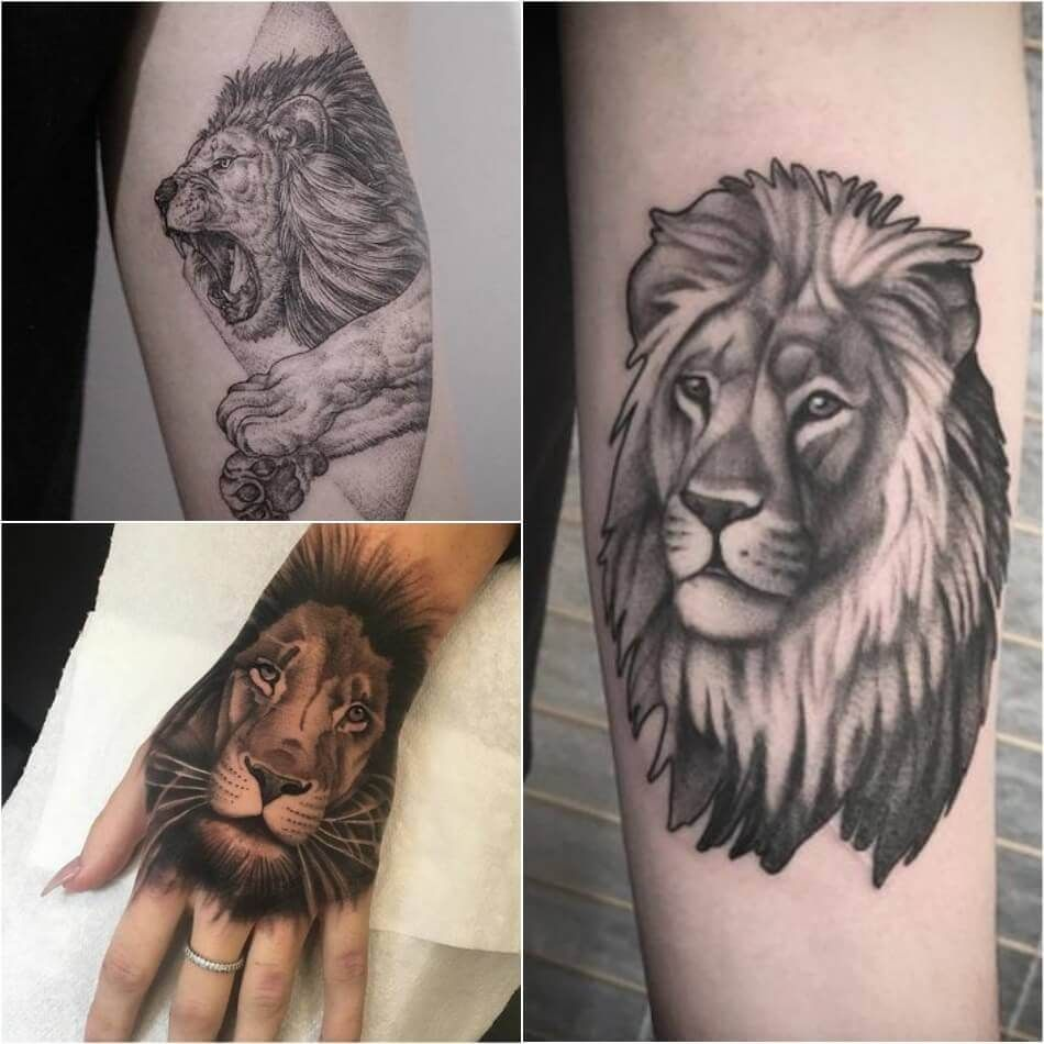 Lion Tattoo Meaning Lion Tattoo Ideas For Men And Women With Photos Lion Tattoo Small Lion Tattoo Lion Tattoo Meaning