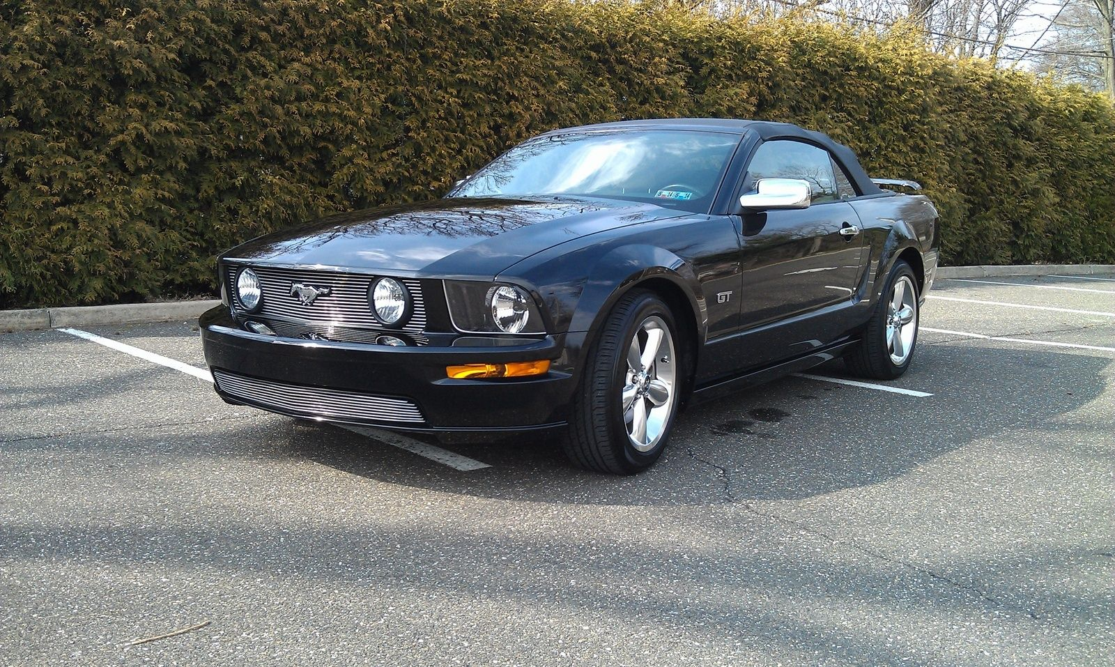 2006 Ford Mustang Pictures Cargurus Ford Mustang 2006 Ford