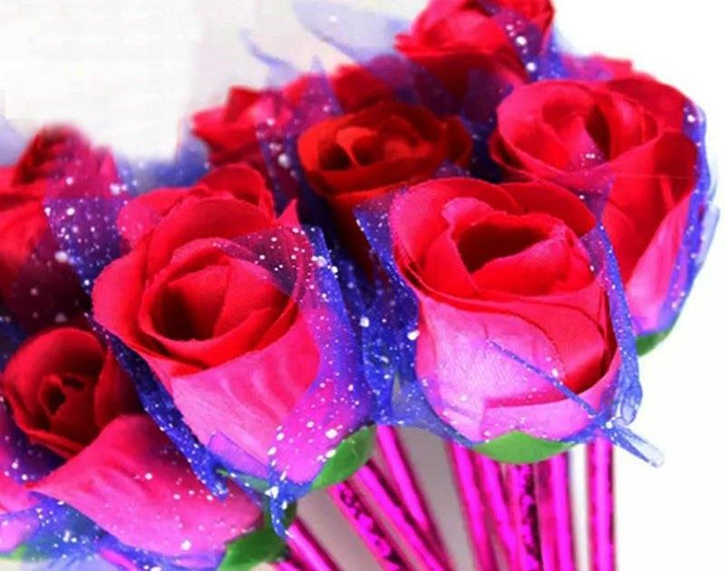 Gambar Bunga Mawar Dan Pena