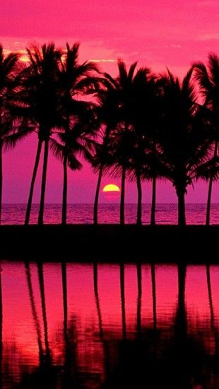 Pink Sunset With Palm Trees Iphone Wallpaper