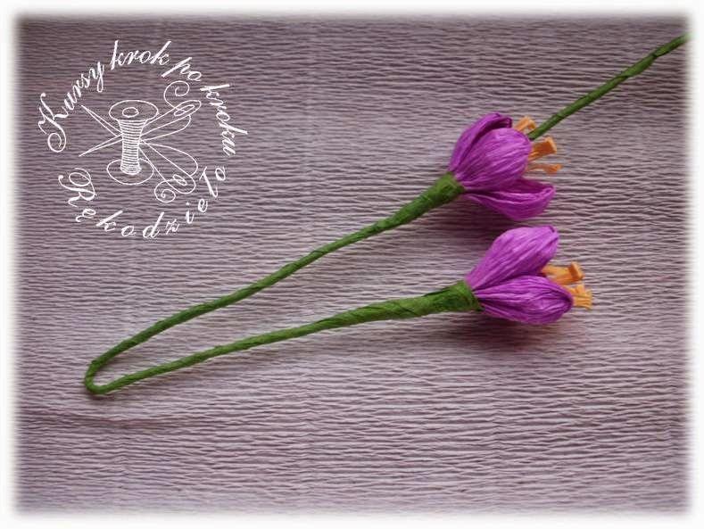 Krokusy Z Krepiny Jak Zrobic Kurs Obrazkowy Paper Flowers Flowers Paper
