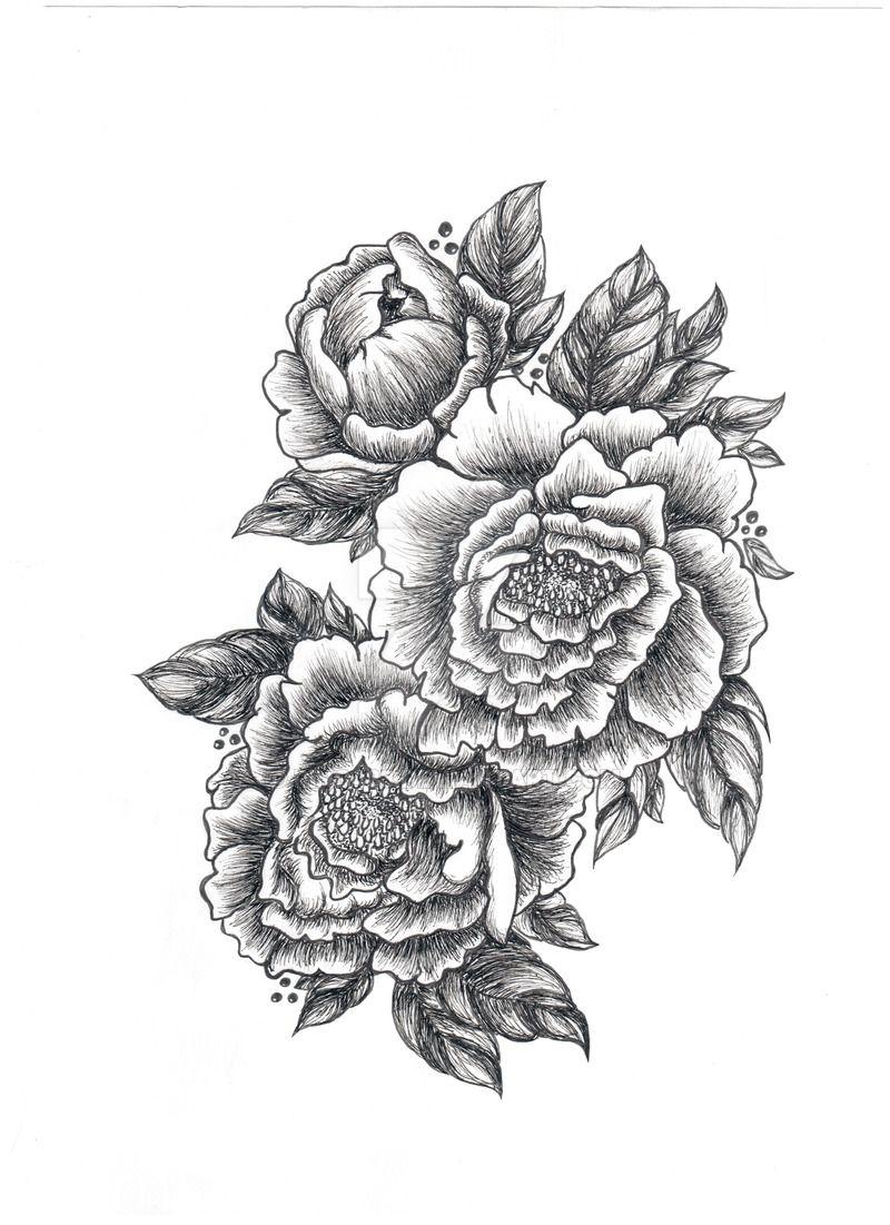 Peony Bw Graphics Sketch Tattoo Peonies Tattoo Flower Tattoo Shoulder Tattoo Sketches