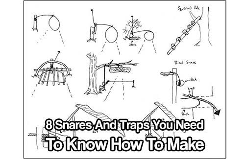 8 Snares And Traps You Need To Know How To Make Shtfpreparedness Survival Prepping Snare Trap Survival Skills