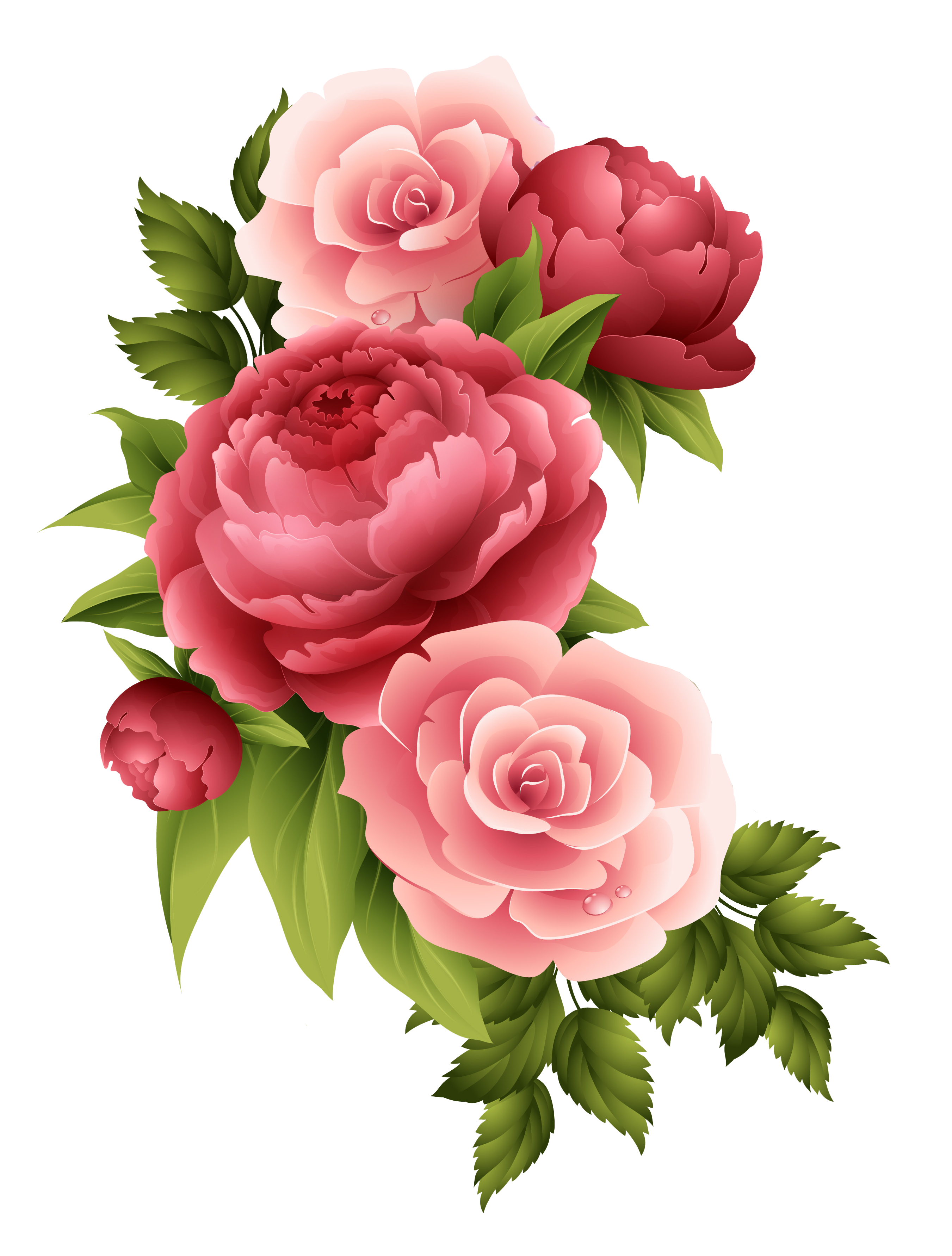 Vintage Roses Pink Png Busqueda De Google Rosas Vermelhas Escuras Adesivos De Unhas Impressos Rosas Vermelhas