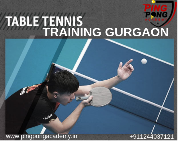 Pingpong Academy The First Table Tennis Academy In Gurgaon
