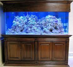 Resultado De Imagen Para Muebles Para Peceras Muebles Para Peceras Peceras Acuario De Arrecife