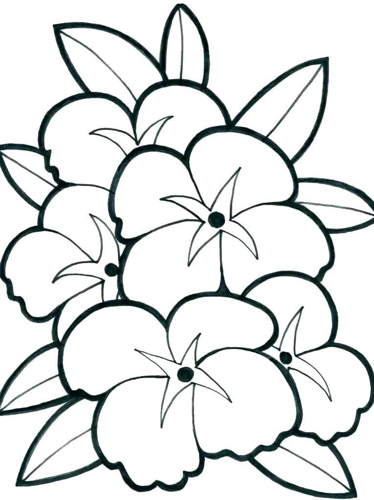 540 Top Coloring Pages Of Cute Flower , Free HD Download