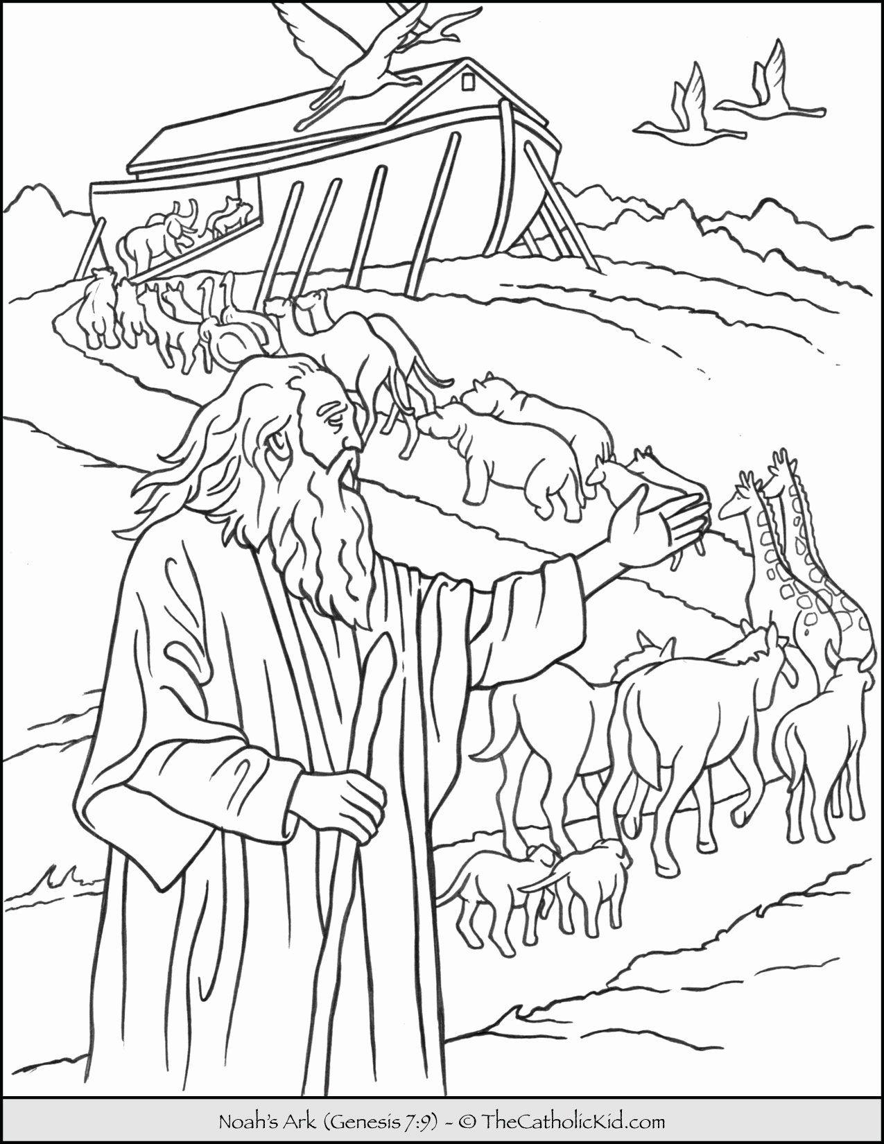 Noah S Ark Coloring Page Best Of Noah S Ark Animals