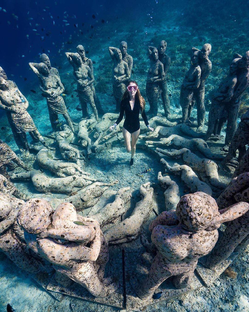 Beautiful Places Underwater: Explore The Underwater Beauty Of Gili Meno In West Nusa