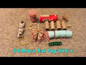 10 Cool DIY Rat Toys