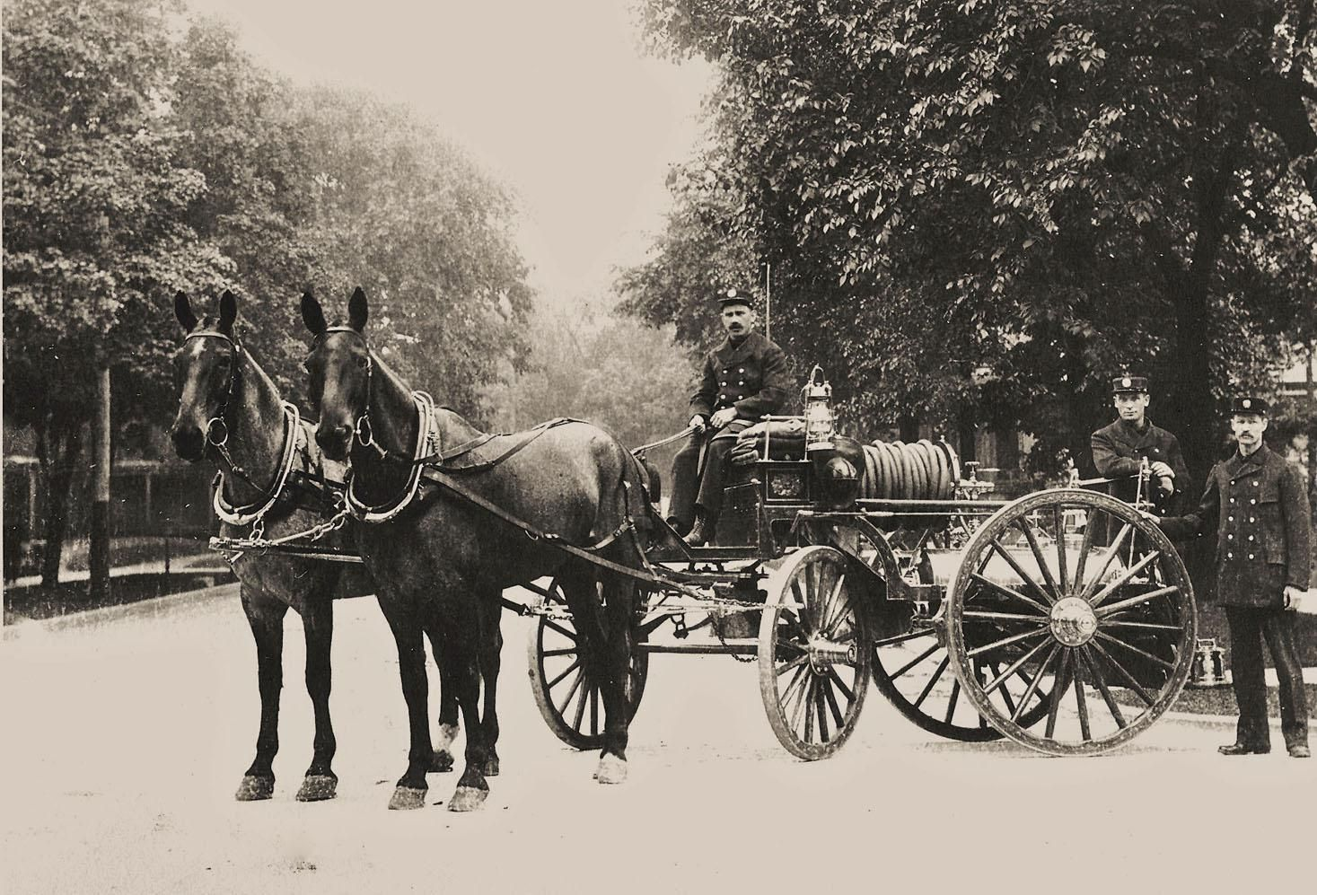 historical horse photo - Google Search