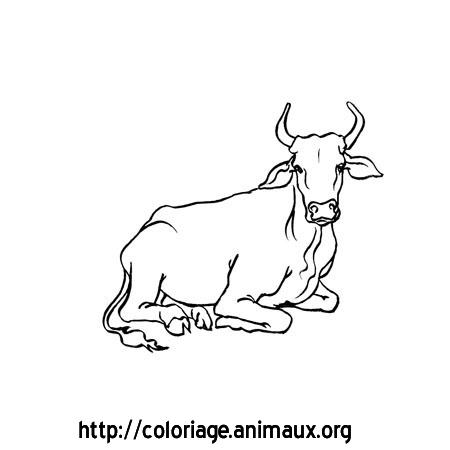 Vache assise coloriage sur animaux org vaches cerfs - Dessin vaches ...