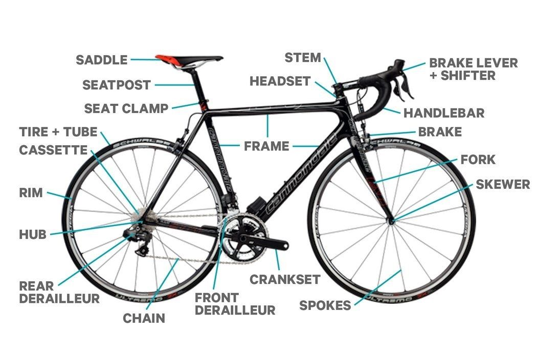 Compare and contrast the different types of bikes used in