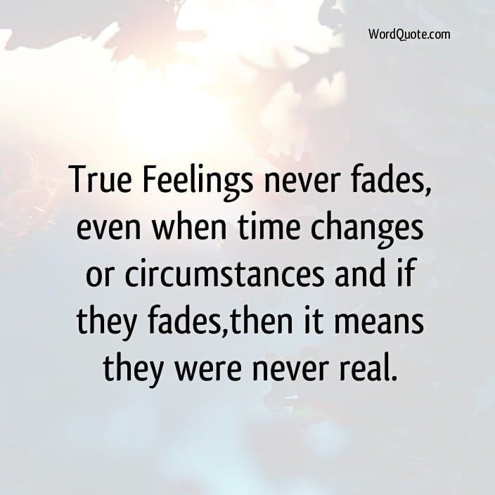 Self True Feelings Never Fadeseven When Time Word Quote Famous Quotes Pinterest True Feelings Never Fadeseven When Time Word Quote Famous