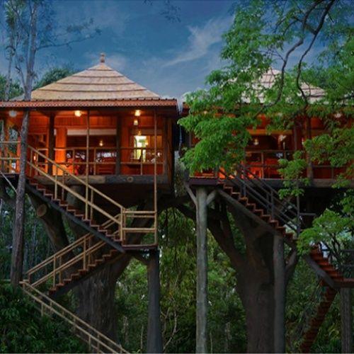 Tour Operators in Ernakulam Kerala India | Kerala Treehouse Holidays
