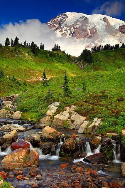 National Park Washington, USA