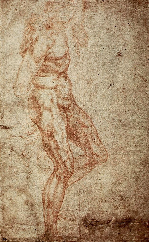 anatomy study by Michelangelo .. | Drawing: Figure | Pinterest ...