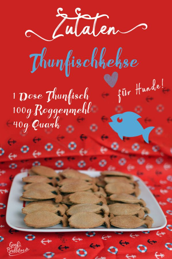 Photo of Recipe: Tuna biscuits for dogs