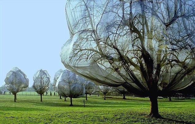 Wrapped trees by Christo and Jeanne-Claude
