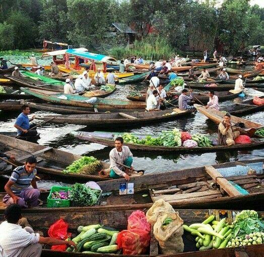 Floating Vegetable Market Dal Lake Kashmir Amazing 640 x 480