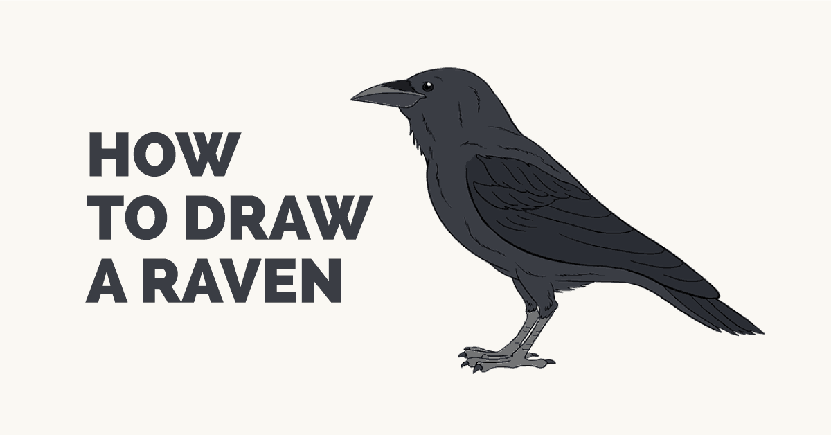 How To Draw A Raven With Images Crows Drawing Easy Drawings