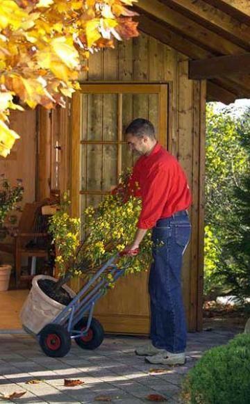 schildl use co winter sch dlinge an k belpflanzen k belpflanzen pinterest sch dlinge. Black Bedroom Furniture Sets. Home Design Ideas