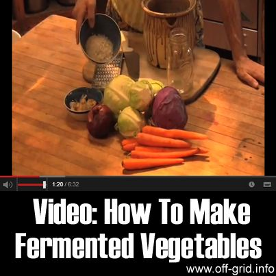 verdure fermentate...