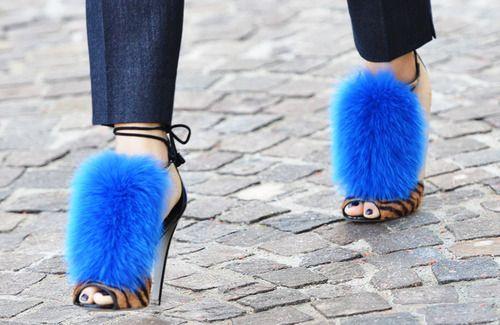 Sergio Rossiblue fur leopard print shoes
