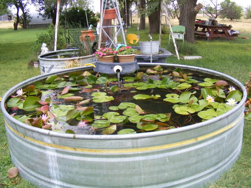 Pond Decorations Pond Decorations Diy Stock Tank Pond