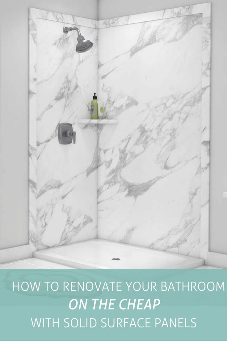 Renovate Your Bathroom On A Budget Solid Surface Shower Wall Panels Create Beautiful Bathrooms At A Fract Shower Remodel Diy Shower Remodel Shower Wall Panels
