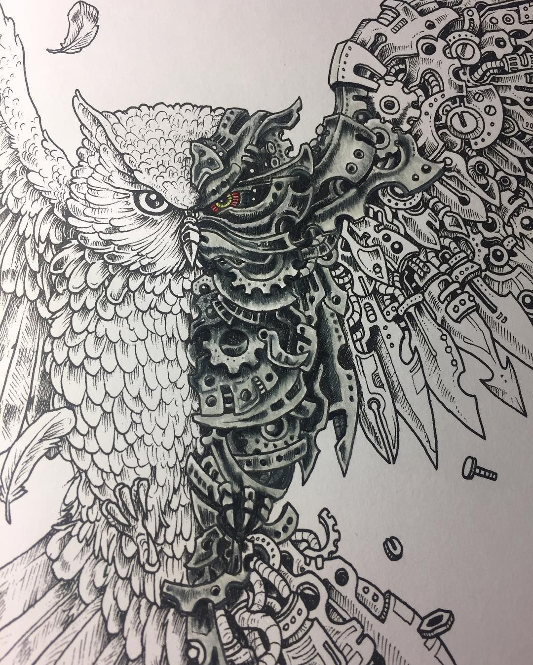 Pin by Рамис Иванов on owl pinterest owl adult coloring and