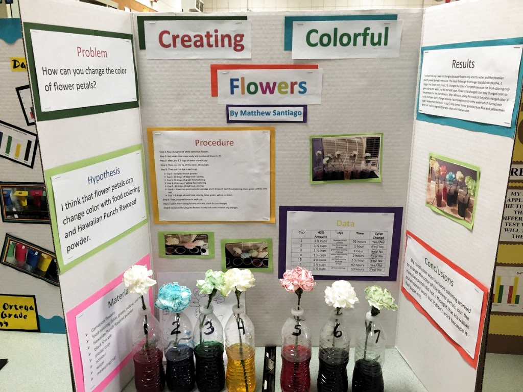 Food Coloring Science Fair Projects In