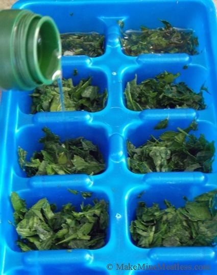 Fresh Tasting Frozen Herbs