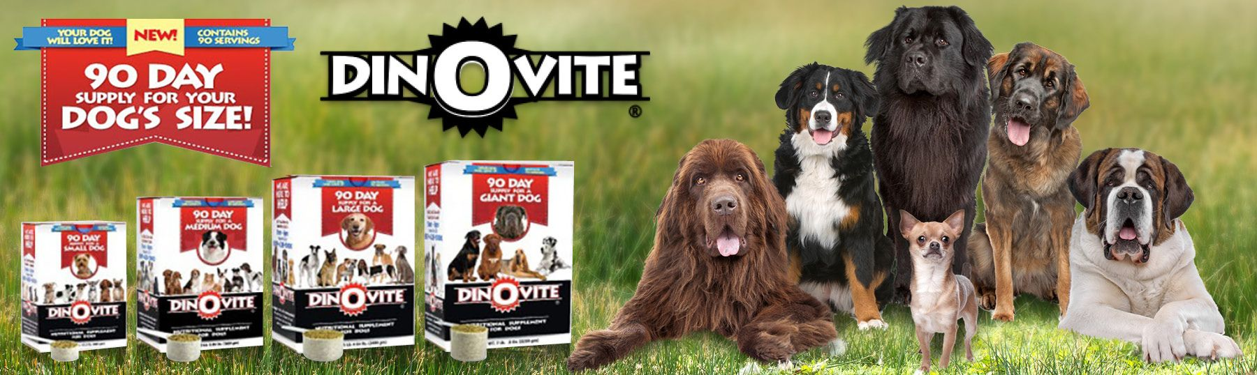 Pin By Dinovite On Natural Pet Products Dogs Natural Pet Cat