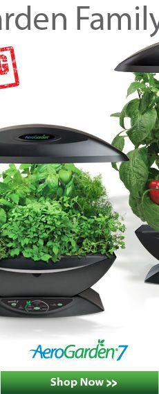 Aero Garden Herbs Indoors Indoor Herb Garden Growing 640 x 480